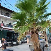 Afroditi Beach Grcka Kasandra Pefkohori Letovanje Olimpturs