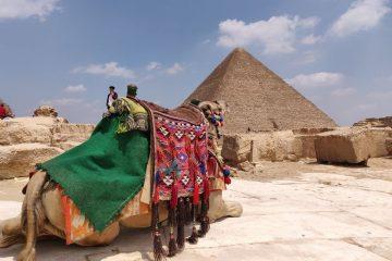 Egipat Letovanje Olimpturs