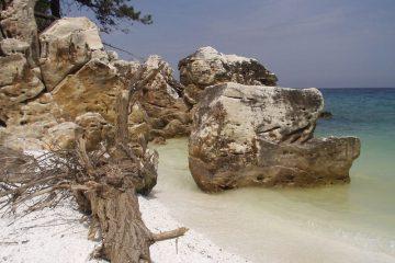 Tasos Grcka Ostrva Letovanje Olimpturs
