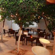 Hotel Nancy Grcka Krit Letovanje Olimpturs